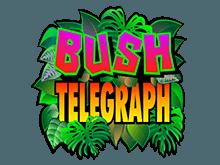 Игра на деньги в игровые автоматы Bush Telegraph